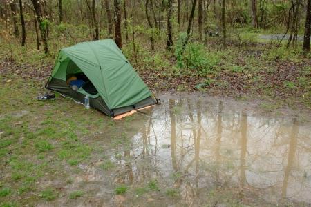 tentswamp1